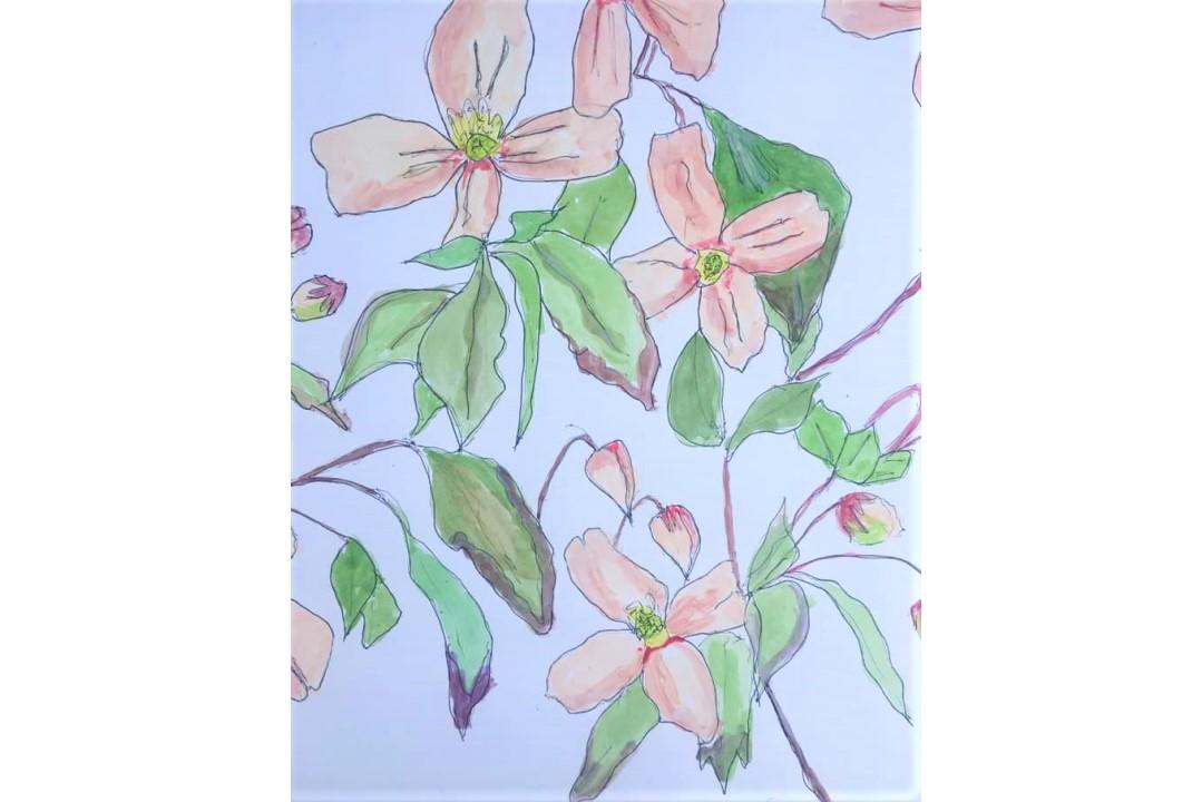April Fool drawing by Rose Hibbert