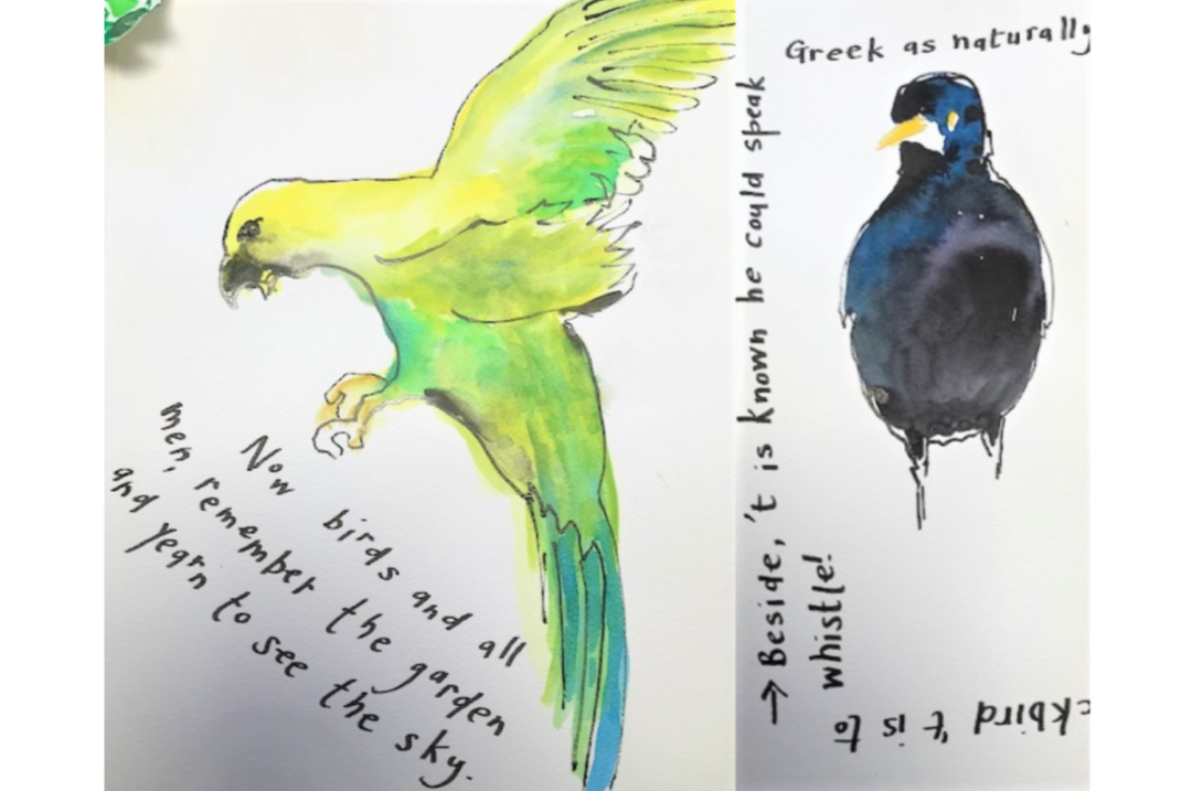 Illustration by Ruth Howard - April Fool