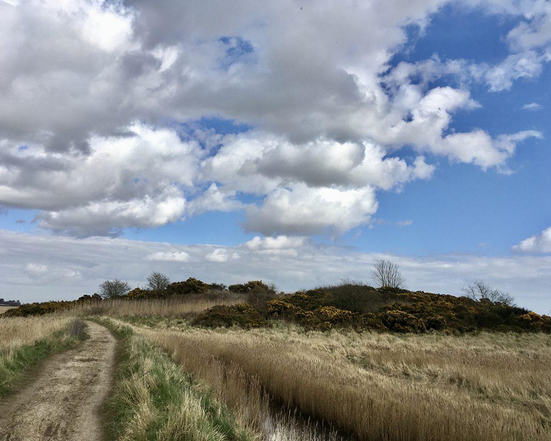 Mile 36 by Jenny Nutbeem
