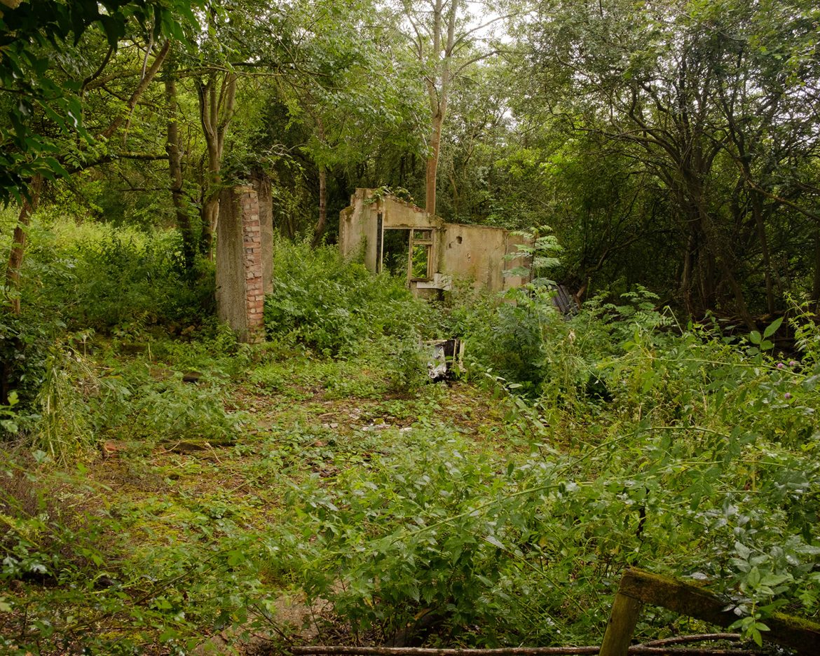 Remains of plotlands houses credit Mike Johnston