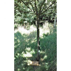 Mile 160 by Pamela Freer Dirks tree
