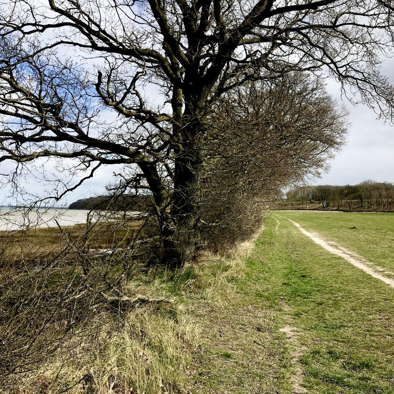 Mile 162 by Nelleke van Helfteren and Helen Scadding