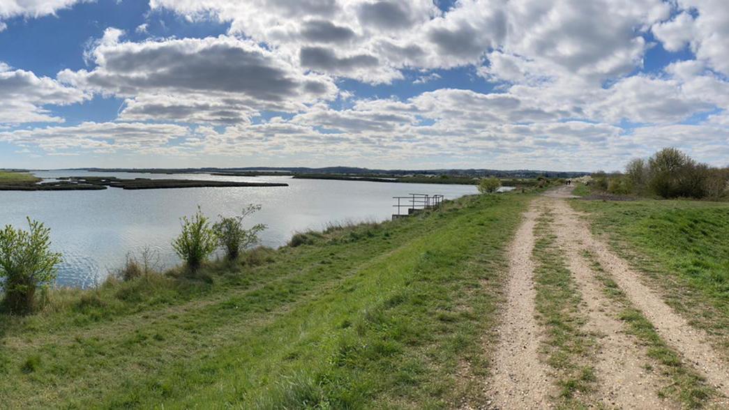 Mile 344 Ivy Marlborough