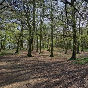 Mile 446 by Carol Watson