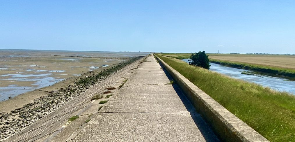 Sea wall on the Dengie credit Kevin Rushby